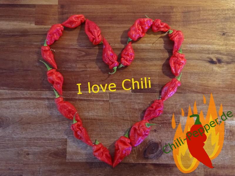 I_love_Chili.JPG