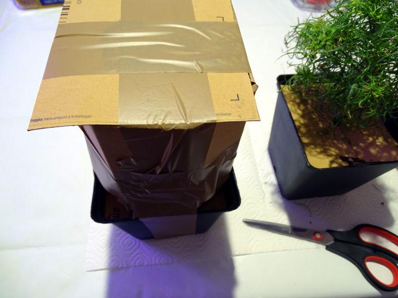 Pflanzen_verpacken4.JPG