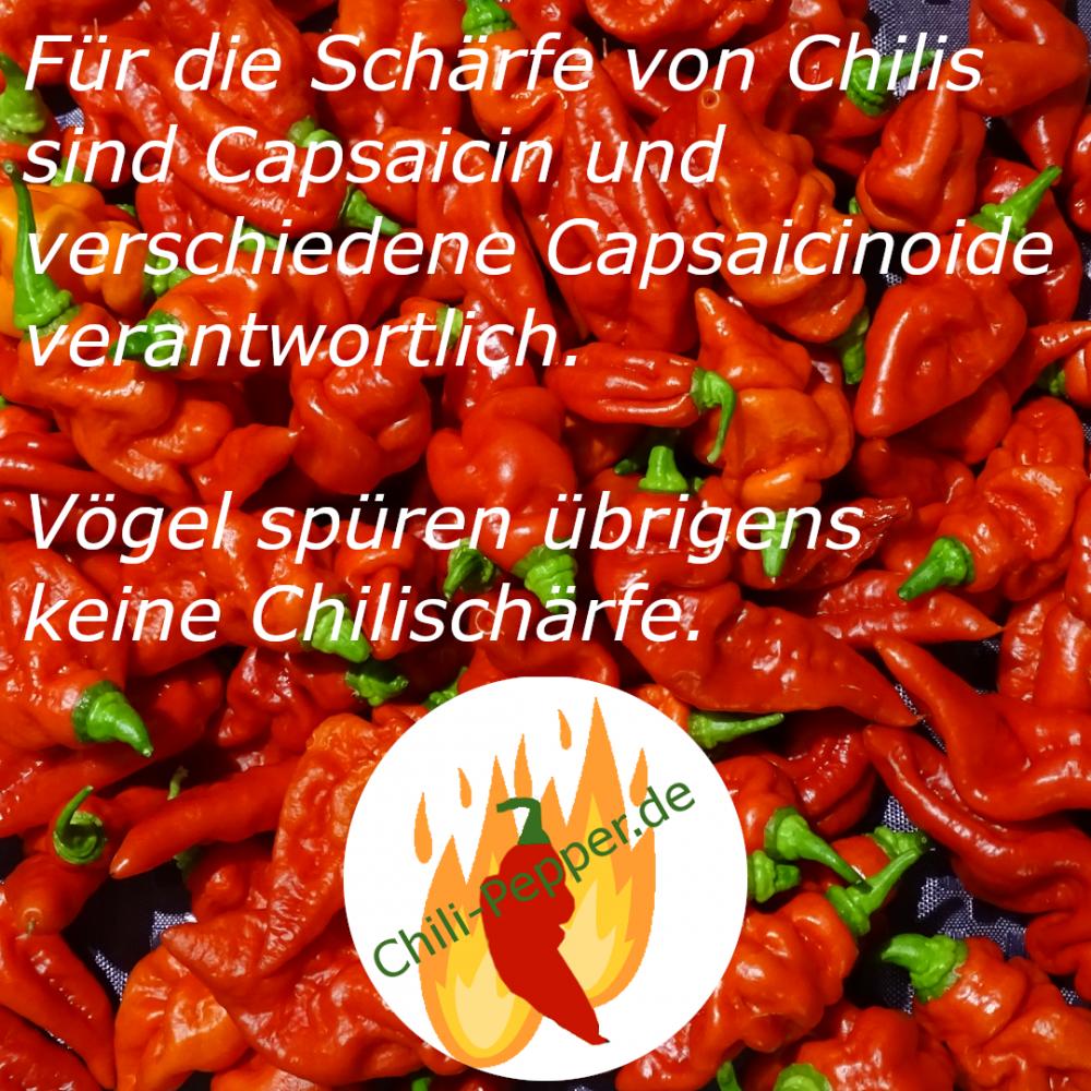 Schaerfe.png