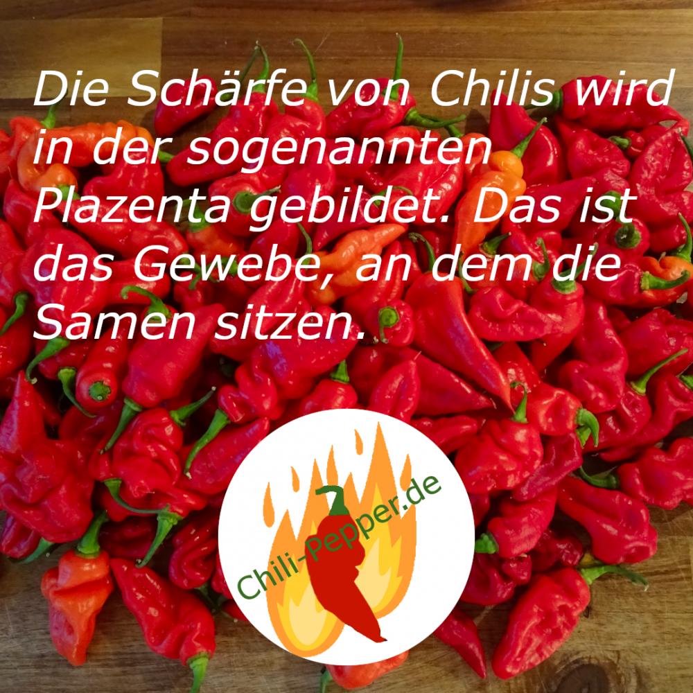 Schaerfe2.png