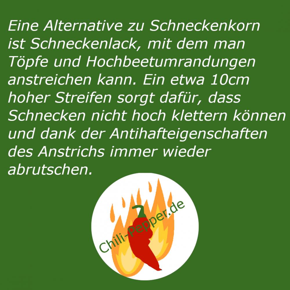 Schneckenlack.png