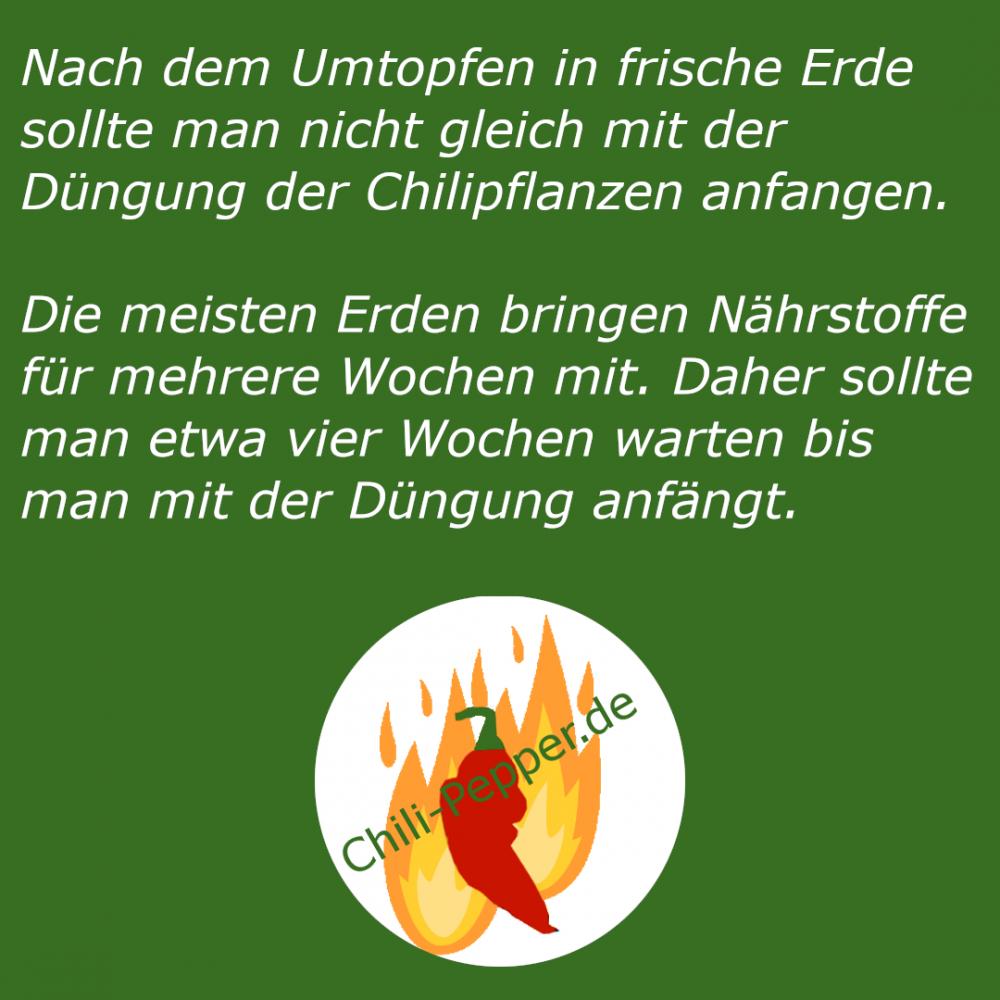 Umtopfen_Duengen.png