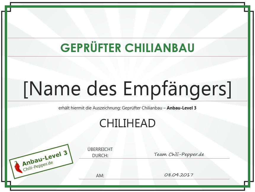 Urkunde_Chilihead.PNG