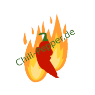 chili-pepper.de